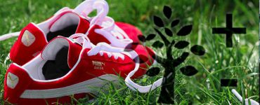 Just One Indicator, Please: PUMA's Environmental Profit and Loss Statement